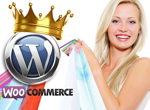 Wordpress ecommerce website design