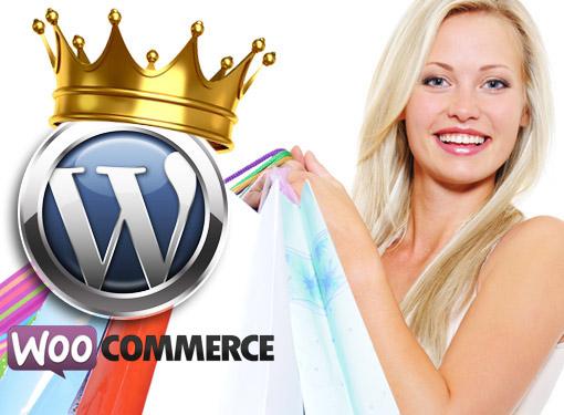 Wordpress ecommerce website design