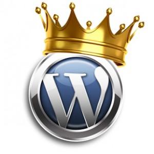 Ft Lauderdale local WordPress website designer
